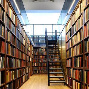 Библиотеки Мысков