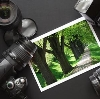 Фотоуслуги в Мысках