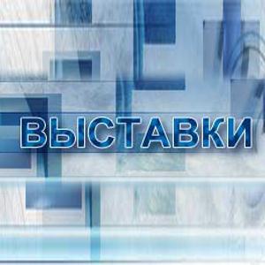 Выставки Мысков